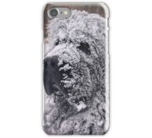 The Newfie Snow Dog iPhone Case/Skin