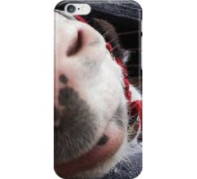 Hello Donkey! iPhone Case/Skin