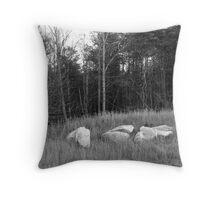 Field, White rock - Stone Mountain Throw Pillow