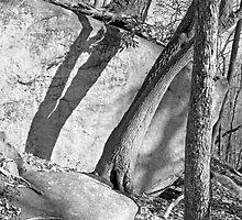 Rock and Shadow - Stone Mountain by Jon Julian