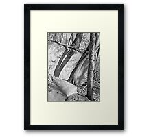 Rock and Shadow - Stone Mountain Framed Print