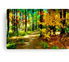 Deep In The Woods of Light & Color Canvas Print