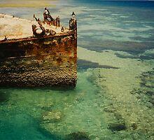 Heron Island Shipwreck, Australia by Shaina Lunde