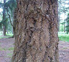 Bark. Not woof woof - tree tree  by dubris