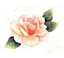 Peach Rose Photographic Print