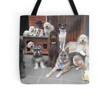 Hold It!   Photo Day at Doggy School. Tote Bag