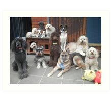 Hold It!   Photo Day at Doggy School. Art Print