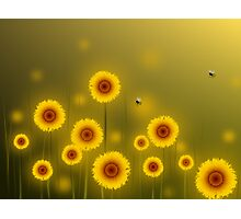 * sunflower field * Photographic Print