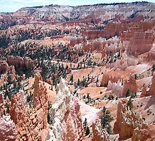 Bryce Canyon National Park by Laurie Puglia