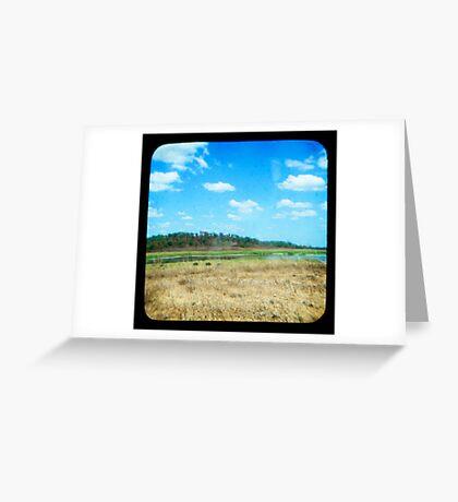 Buffulo Country Greeting Card