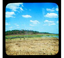 Buffulo Country Photographic Print