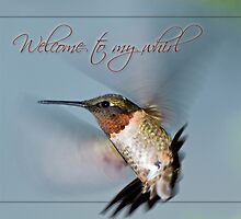 Welcome to my  Whirl  by Bonnie T.  Barry
