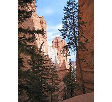 Scenic Ravine, Bryce Canyon National Park Photographic Print