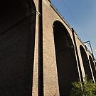 Cuffley Viaduct by Lea Valley Photographic