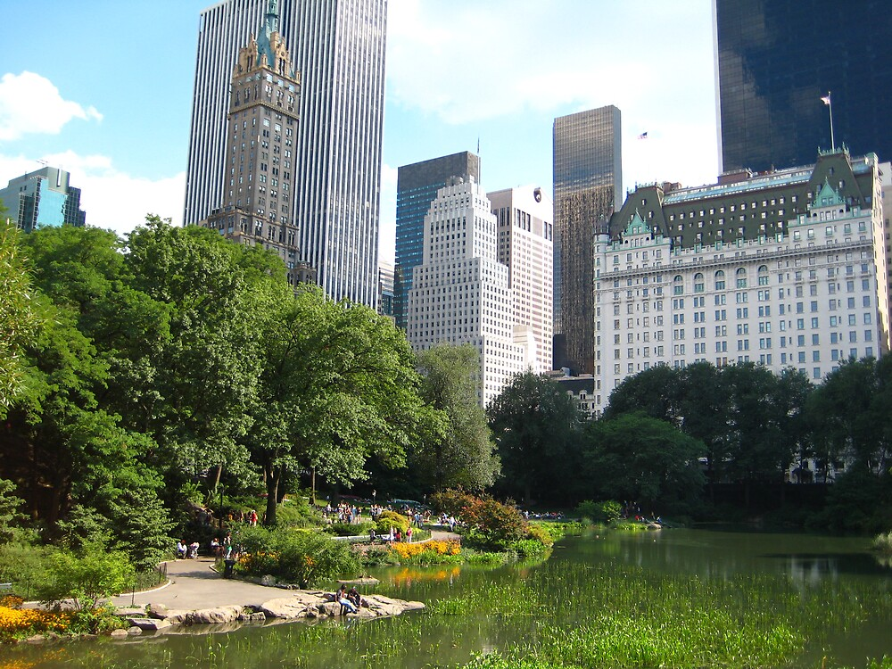 Summer in Central Park by Naddl