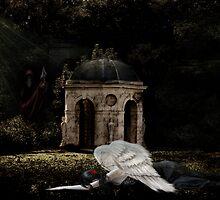 Fallen Angel by WJPhotography