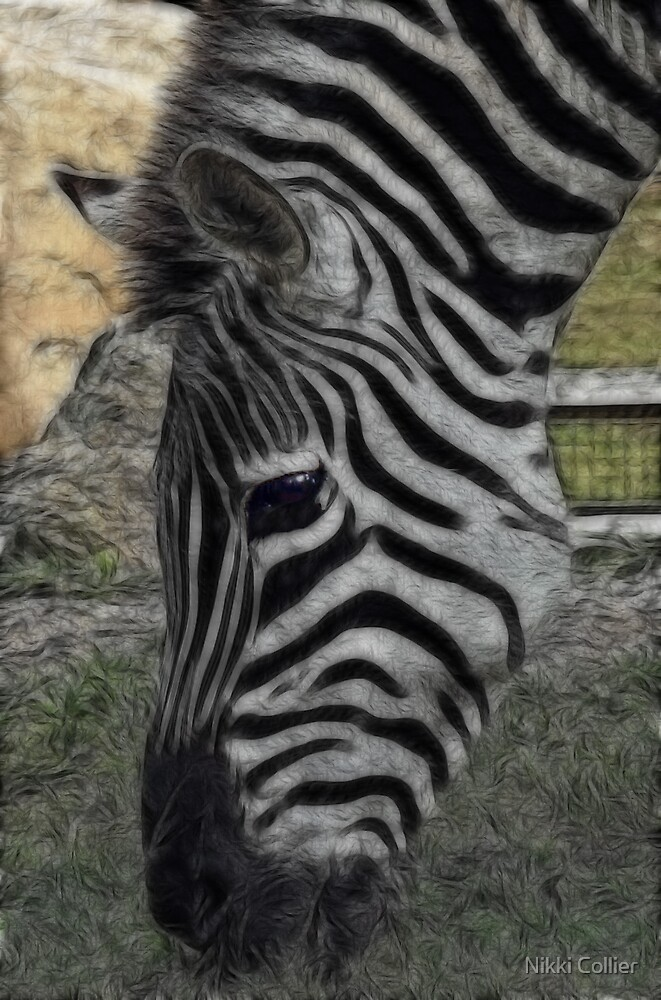 Stripes by Nikki Collier