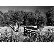 Late Summer Photographic Print