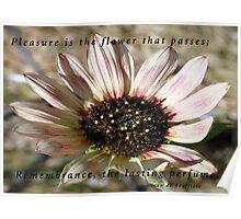 Flower's Perfume Poster