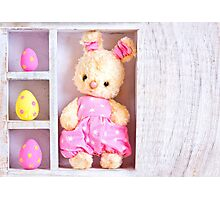 Rabbit bunny toy and easter eggs on the case  Photographic Print