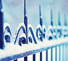 metal decorative fence fragment with snow by Oksana Ariskina