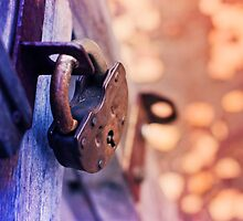 Lock on Fence for Security by Oksana Ariskina