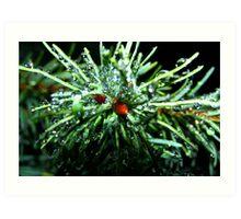 Bubbly Pines Art Print