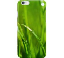 Water drops on the green grass background iPhone Case/Skin