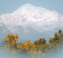 Mt. Denali in Alaska by Patricia Montgomery