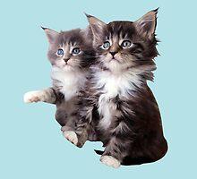 Kittens by Vitalia