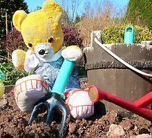 Fred Bear prepares the soil by missmoneypenny