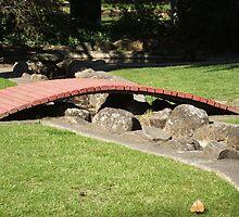 small walkway bridge across water by Rebecca Simmons