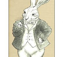Mr. Rabbit and His Golden Watch by felissimha