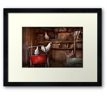 Animal - Chicken - The duck is a spy  Framed Print