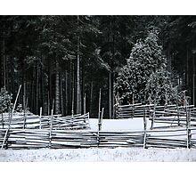 'December' Photographic Print