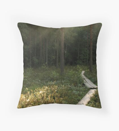 'Path to the Dreams' Throw Pillow