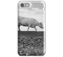 single cow feeding on the lush grass iPhone Case/Skin