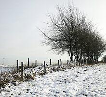 Winters tale by Jeff  Wilson