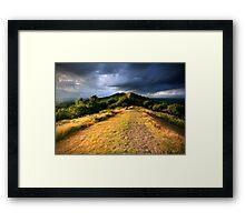 Summer Evening Light Framed Print