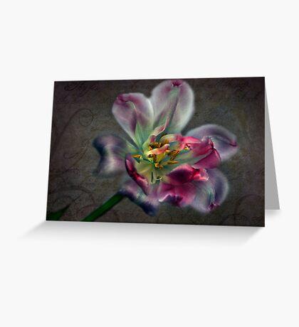Tulipa laureola Greeting Card