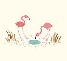 Flamingos by Sophie Corrigan