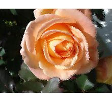 Frosted Glass Rose Photographic Print