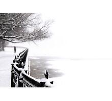 snowfall Photographic Print