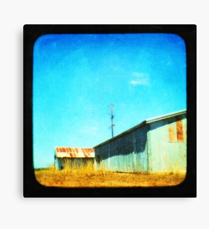 Down by the Shed Canvas Print