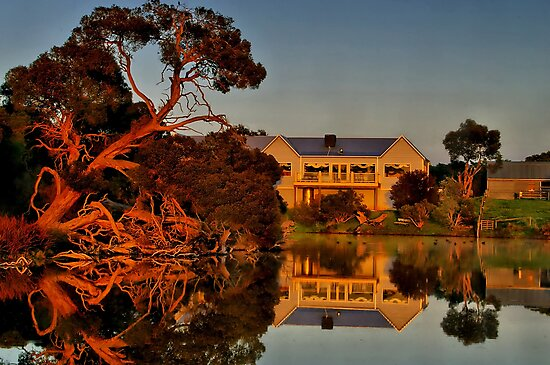 """Morning Reflections at The Minya Winery"" by Phil Thomson IPA"