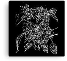 The Plant (black) Canvas Print