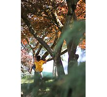 Clambering Up the Tree Photographic Print