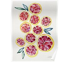 Sliced Grapefruits Watercolor Poster