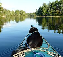 Kayaking with Solomon by LifeInMaine