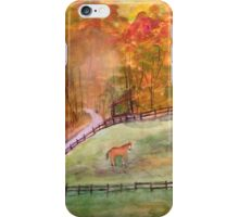 georgia landscape iPhone Case/Skin